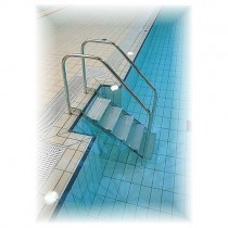 DISABLED PERSONS POOL ACCESS LADDERS